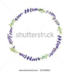 lavender drawing - Google Search