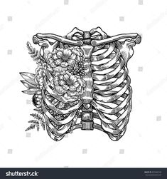 Find Tattoo Anatomy Vintage Floral Illustration Floral stock images in HD and millions of other royalty-free stock photos, illustrations and vectors in the Shutterstock collection. Skeleton Drawings, Skeleton Tattoos, Skeleton Art, Torso Tattoos, Sleeve Tattoos, Tattoo Sketches, Tattoo Drawings, Flower Tattoos, Small Tattoos