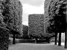Landscape no. 1, Parc de Sceaux, 1995