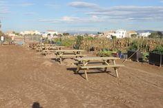 Zona de picnic para disfrutar con familia y amigos. Dolores Park, Travel, Orchards, Friends, Viajes, Destinations, Traveling, Trips