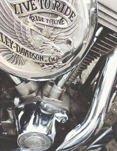 harley davidson- can't wait to have one of my own again!❤ I miss riding. Vespa Motorbike, Motorcycle Men, Cool Motorcycles, Harley Davidson Motorcycles, Harely Davidson, Harley Ultra Classic, Biker Chic, Love Car, My Ride