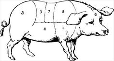 european butcher chart - Google Search