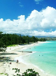 Kailua and Lanikai Beach - (more secluded) NE Oahu, I use to live there, they were both great! Hawaii Vacation, Vacation Places, Vacation Destinations, Dream Vacations, Vacation Spots, Places To Travel, Vacation Ideas, Honeymoon Ideas, Kailua Hawaii