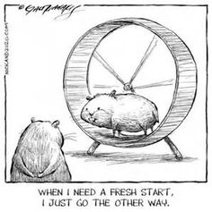 ... Photos - Hamster Wheel Cartoons Hamster Wheel Cartoon Hamster Wheel