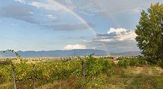 Italiaans In Beeld | Ciao tutti - ontdekkingsblog door Italië
