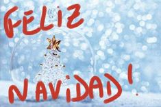 Feliz Navidad! Bon Nadal! Merry Christmas! 🎄🎁 💋
