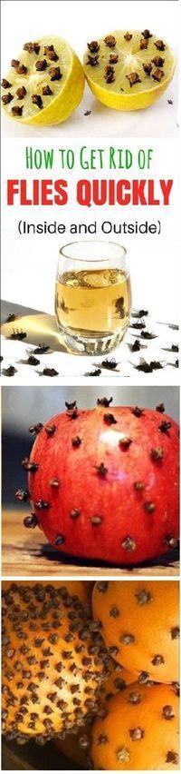 how to get rid of flies outside your door