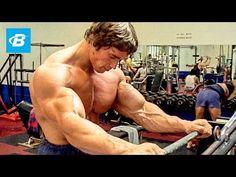 Arnold Schwarzenegger Bodybuilding Training Motivation - No Pain No Gain Best Beginner Workout, Workout Routines For Beginners, Fun Workouts, Bodybuilding Training, Bodybuilding Workouts, Bodybuilding Motivation, Fitness Gym, Fitness Motivation, Arm Workouts