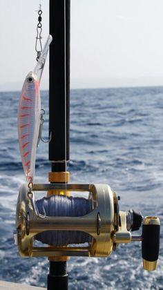 059fc8a6f1d 130 Best Fishing images | Fishing, Fishing stuff, Gone fishing