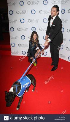 SARAH ANN MACKLIN & DAVID GANDY COLLARS & COATS GALA BAL LONDON ENGLAND UK 08 November 2012 Stock Photo