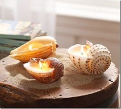 your own Pottery Barn style Shell Candles from old candle wax!Make your own Pottery Barn style Shell Candles from old candle wax! Seashell Candles, Old Candles, Seashell Crafts, Beach Crafts, Diy Crafts For Kids, Crafts With Seashells, Craft Ideas, Decor Ideas, Pillar Candles