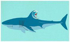 Shark Surf