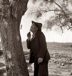 1939, мужчина бреется на обочине. photos by Dorothea Lange