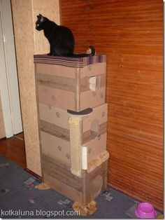 cat houses do not have to be expensive