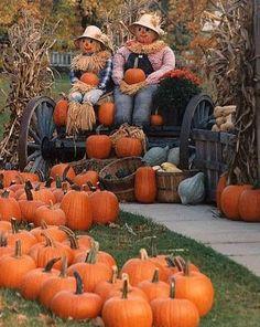 Outdoor Halloween, Holidays Halloween, Halloween Decorations, Happy Halloween, Cape Cod, Pumpkin People, Casper The Friendly Ghost, Autumn Scenes, Fall Harvest
