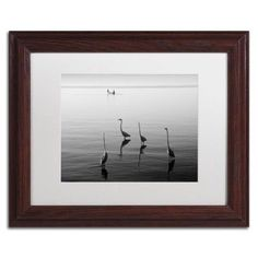 Trademark Fine Art 4 Herons and Boat Canvas Art by Moises Levy White Matte, Wood Frame, Size: 16 x 20, Gray