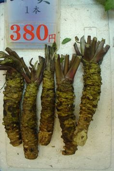 Fresh Wasabi [Wasabia japonica or Eutrema japonica] root for sale at Nishiki Market in Kyoto, Japan