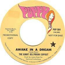 """GIANT JELLYBEAN COPOUT """"Awake in a Dream"""" b/w """"Look at the Girls"""" 1968 POPPY(MGM).""""BEACH BOYISH"""" & Fuzz  DOUBLE A SIDE  killer produced by James Ryan from THE CRITTERS! (Project 3). Amazing vocal arrangements & driving bass. This is a studio project between Ryan and Bob Dileo who had some cool Soft Psych 45s on Columbia like """"Rhani"""" w/ sitar and its fuzzed flip """"Band in Boston"""". Bob Dileo has an Insane voice! So good.. Crazy high or low and mellow like MARK ERIC. I love this record! I found…"""