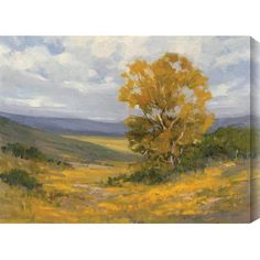 """Gallery Direct Cottonwood II by Kim Coulter Painting Print on Canvas Size: 18"""" H x 24"""" W"""