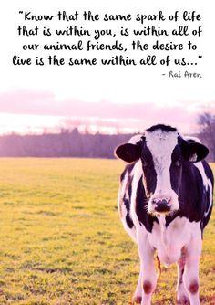 #vegan #love