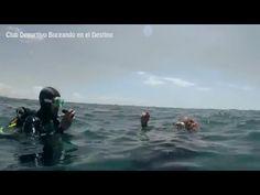Curso Open Water Diver en Zaragoza - YouTube