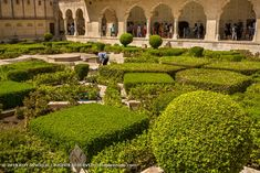 Amer Fort 017: The chahar bagh is designed in a geometrical pattern. Amer Fort, Rajasthan India, Golf Courses, Pattern, Photography, Design, Goa India, Photograph, Patterns