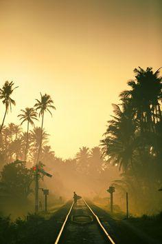 Sri Lanka surf trip... what an adventure.