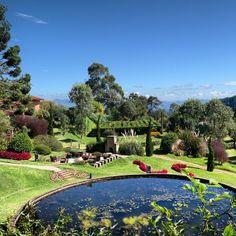 """Localizado numa área de 35 mil m² em Campos do Jordão (SP), o """"Amantikir Garden – Jardins que Falam"""" é uma opção para que gosta de um belo passeio de contemplação e cenários realmente lindos. Possui 22 jardins, que somam mais de 800 espécies de plantas e inspirações de jardins de várias partes do mundo. Foto: @carol_trevelin"""