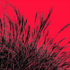 Davide Polla, Grass (red), 2011