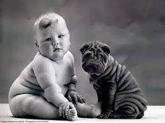 baby photography anne geddes - Buscar con Google