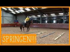 Basis springen   PaardenpraatTV - YouTube