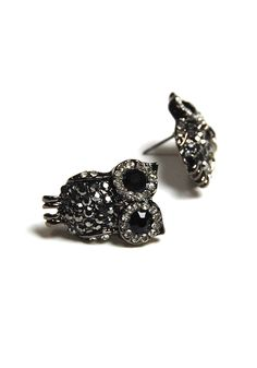 owl earrings. I already have dangly ones, studs would be nice too!