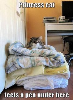 My parents used to call me the Princess & the Pea because I needed the covers smoothed out before bedtime....not much has changed....