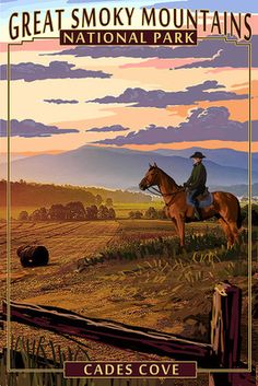 Cades Cove & Horse  - Great Smoky Mountains National Park, TN - Lantern Press Poster