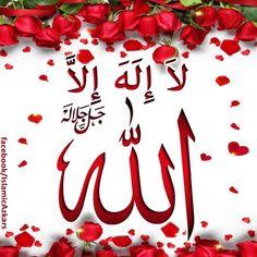 La Ilaha Illallah, Islamic Images, Hadith, Quran, Blog, Beautiful, Blogging