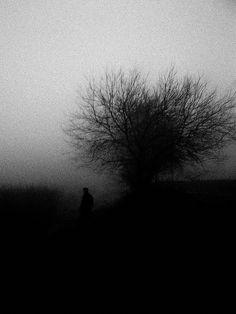I am a sucker for foggy photos. Dark Photography, Black And White Photography, Dark Places, Perfect World, Dark Beauty, Dark Art, Dark Side, Light In The Dark, Mists