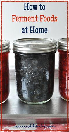 How to Ferment Fruits and Vegetables at Home - Want to learn how to make your own fermented foods? #diy #fermentedfoods #probiotic #fruits #veggies #howto