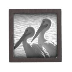 Pelican Pals in Black Journals Poster Wall, Poster Prints, Posters, Custom Gift Boxes, Jelly Belly, Make Your Own Poster, Black Pencil, Modern Artwork, Keepsake Boxes