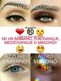 Buongiorno ⚡ #Riproposta ⚡ Io sono #Purosangue voi? ⚡ Passate nel nostro gruppo : https://www.facebook.com/groups/1618492761792081/ Telegram : https://t.me/joinchat/FhbXdUJZGkmAv5vBgKZB Instagram : https://www.instagram.com/harry_potter_binario934/ ⚡Hermione⚡