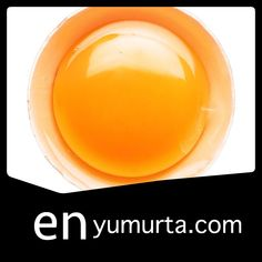 yumurta siparişi