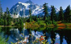 imagens inspiradoras natureza - Pesquisa Google