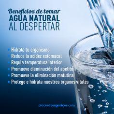 Por qué debemos tomar agua al despertar?... Checa esto!