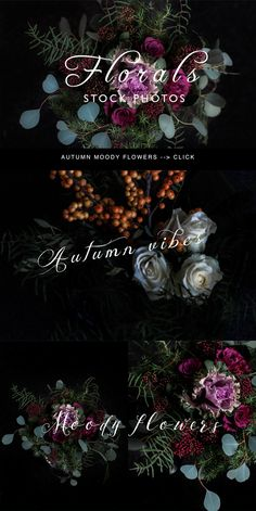 Moody autumn floral stock photos - 6 by Petra Veikkola on @creativemarket