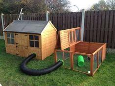 Bunny Sheds, Rabbit Shed, Rabbit Hutch Plans, Rabbit Hutches, Pet Rabbit, Diy Bunny Cage, Diy Guinea Pig Cage, Guinea Pig House, Bunny Cages