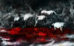 Latoya Williams - animal wallpaper: High Definition Backgrounds - 1680x1050 px
