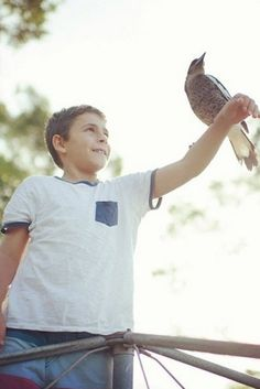 Australian Family Rescues Abandoned Baby Magpie, Now Has The Coolest Pet Ever