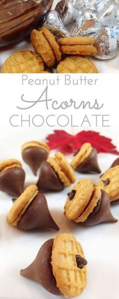 Peanut Butter & Chocolate Acorns. Perfect little fun bite for kid parties and harvest time. Great DIY kids' craft. Super cute. Fun to make, fun to eat. Thanksgiving.