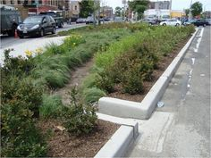 Curb cut to direct water into the bioretention. Site located in New York. Photo credit: Nandan Shetty with NYC Parks and Recreation Department.
