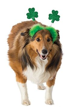 Rubies St Patricks Day Shamrock Bopper Dog Costume *** You can find more details by visiting the image link.