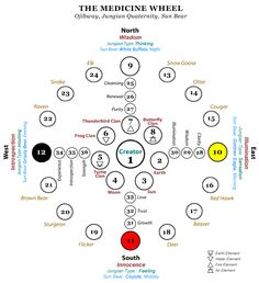 This map of the Ojibwa medicine wheel has as its inspiration, the cycles of the sun, moon and stars. In this map, many of the important locations have been identified with animals, which have very real significance to the Ojibwa. Native American Spirituality, Native American Symbols, American Indians, American Women, American History, Cherokees, Native American Medicine Wheel, Native Art, Native Indian